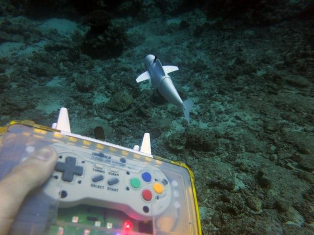 SoFi – Un poisson robot qui analyse de vrais poissons