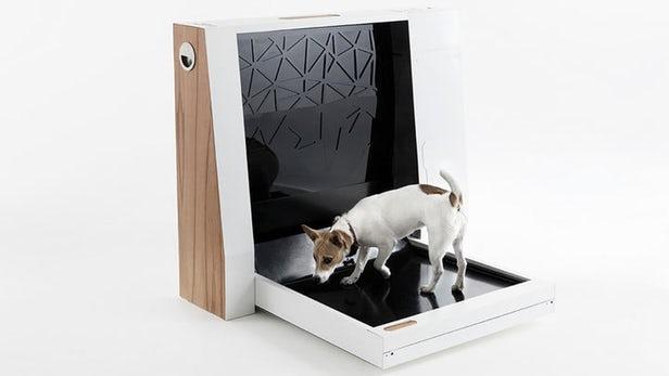 Inubox – Des toilettes pour chien automatisées