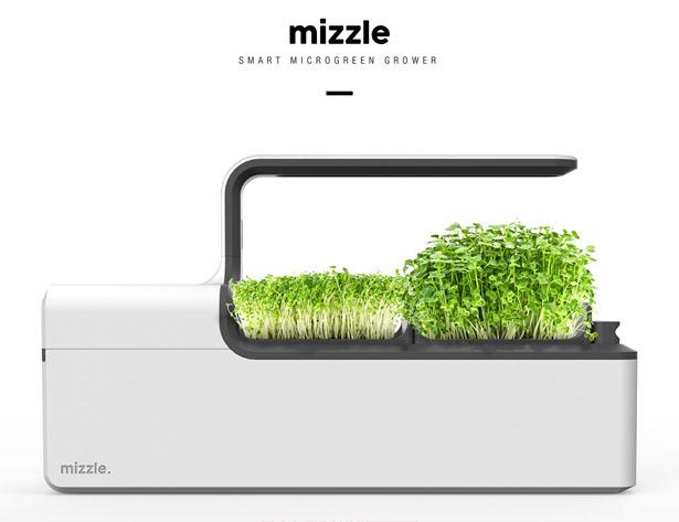 Mizzle – Un potager connecté pour le jardinage à domicile