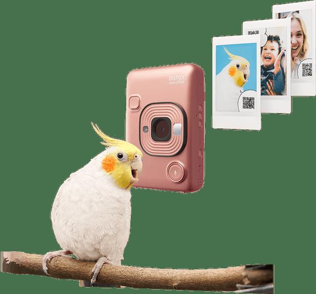 LiPlay - Fujifilm donne une voix à votre instax 1