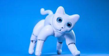 MarsCat - Ce chat robot va vous faire littéralement craquer
