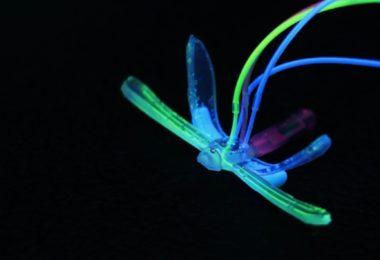DraBot - Une libellule robotisée