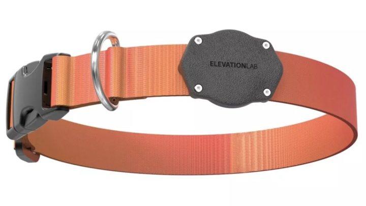 Accessoire AirTag 4 - Fixation de collier pour animaux