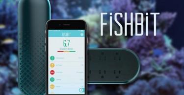 FishBit aquarium