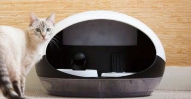 Catspad distributeur de nourriture eau connecté chat