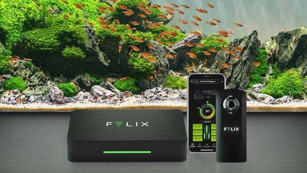 L'aquarium intelligent Felix utilise une webcam sous-marine à 360 degrés