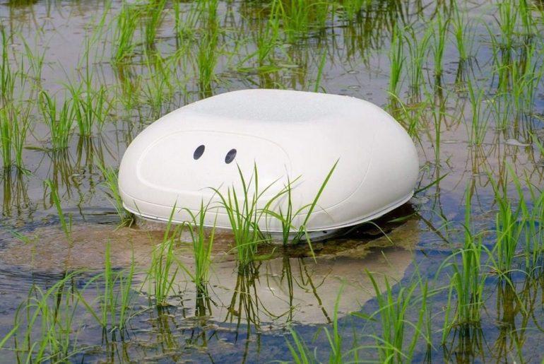 Aigamo - Ce robot canard pourrait aider les riziculteurs japonais