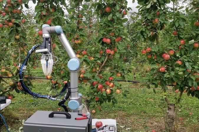 Ce robot de récolte de pommes cueille un fruit toutes les 7 secondes